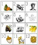 Free Fall /Autumn Worksheets and Theme Printables for Classroom or Homeschool Use